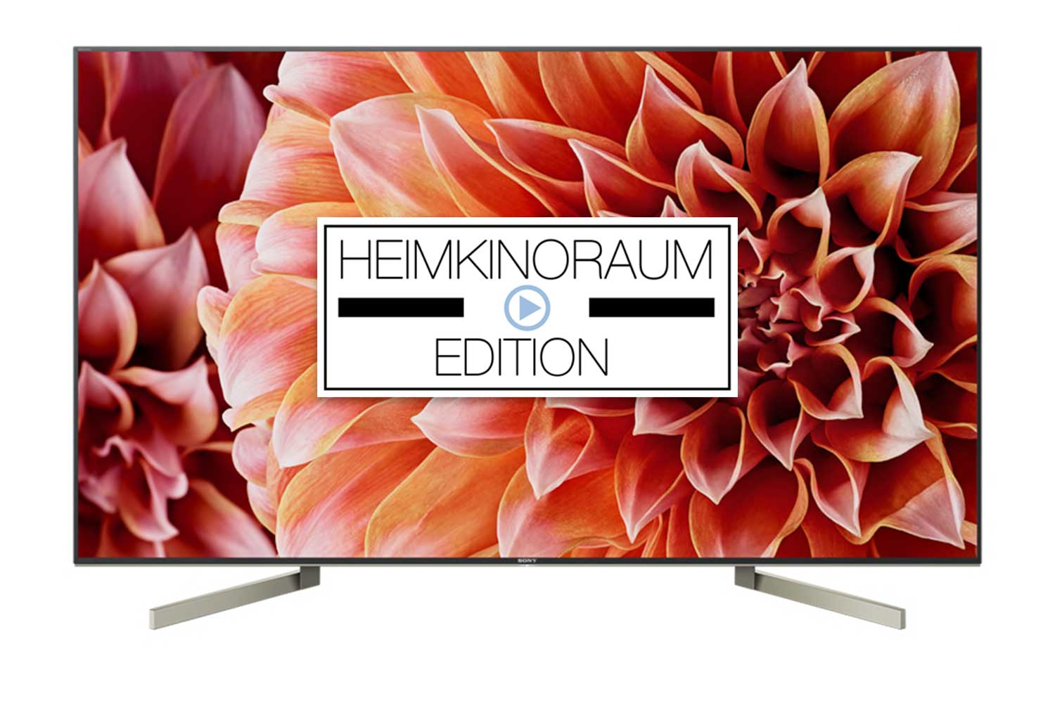 Sony XF9005 4K HDR Fernseher mit Android TV